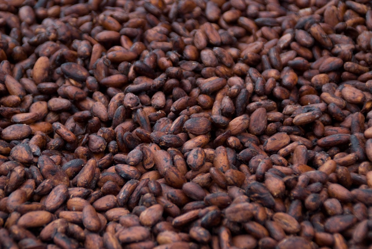 Cocoa - A natural product with many health and beauty Benefit